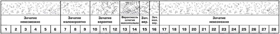 http://ms.petsinform.com/f-ms07-04/arbor2.jpg